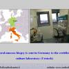 Diapositiva019