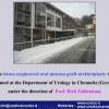 Diapositiva105