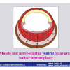 INDIA-1-2012_Pagina_46
