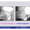 INDIA-2-2012_Pagina_24