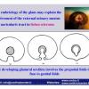 INDIA-3-2012_Pagina_26