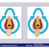 INDIA-3-2012_Pagina_69