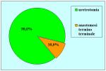 uretra-bulbare-mucosa-orale-dorsale-Asopa-it-10